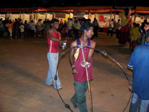 Marathon (bangalore_100_1537.jpg) wird geladen. Eindrucksvolle Fotos von der indischen Halbinsel erwarten Sie.